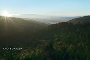 """""""Posadźmy milion drzew"""" w kampanii """"Po stronie natury"""" wody Żywiec Zdrój"""