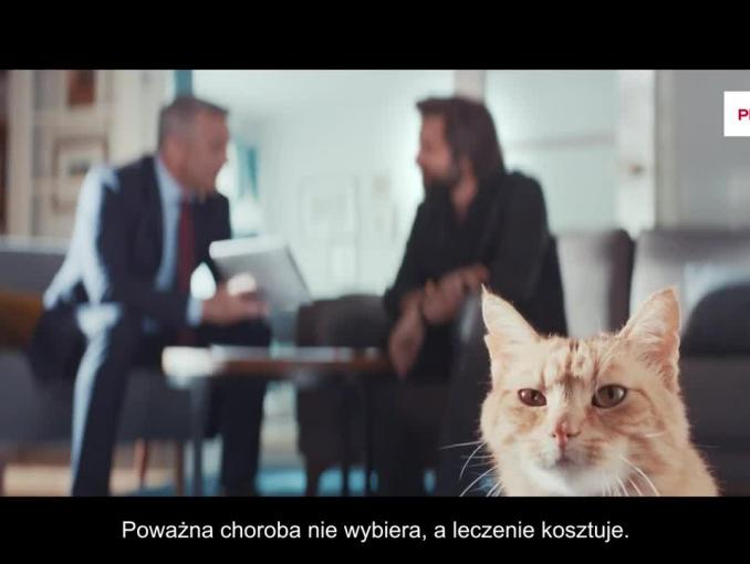 Kot Młodego Boga reklamuje Prudential