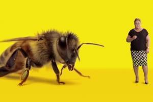 "Dorota Wellman promuje ""Adoptuj pszczołę"" od Greenpeace Polska"