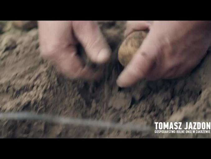 Lidl reklamuje świeże polskie ziemniaki