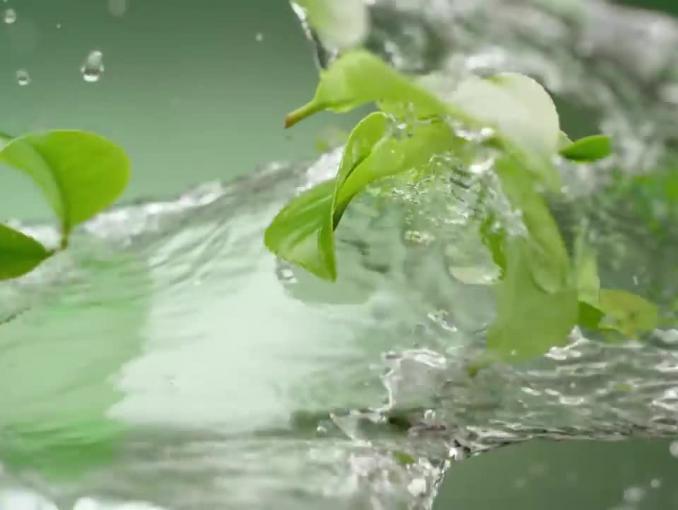 Zasmakuj lekkości - Żywiec Zdrój Green Tea