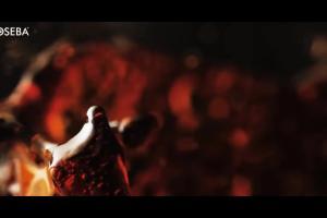 """""""Wyjątkowi jak TY"""" - spot kawy Woseba Mocca Fix Gold"""