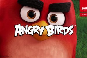 Angry Birds w promocji Polomarketu