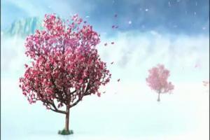 Polsat - spot ramowki na wiosne 2012