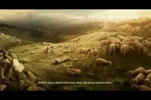 konkurs FunPack HD - reklama z Sercem i Rozumem