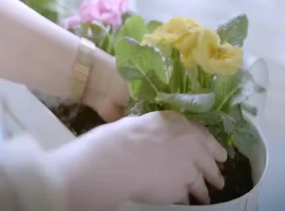 Schowaj zimę na wiosnę - bałwan w kampanii IKEA