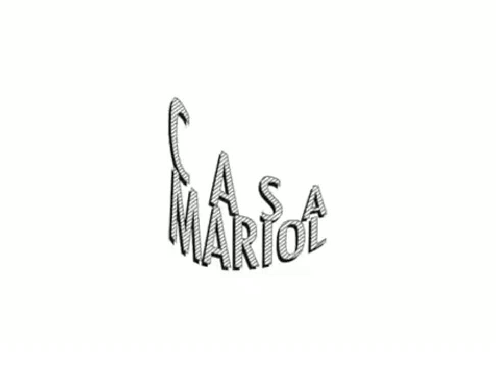 Casa Mariol wine ink - case study