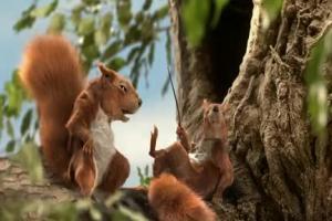 Wiewiórki reklamują pożyczkę bez wyrzeczeń w Banku BGŻ
