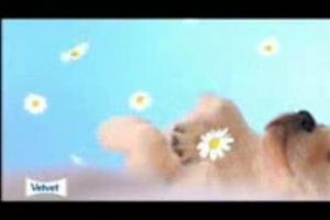 Velvet Aroma: rozkosznie delikatny!!!