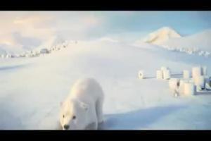 Velvet - spot z białymi niedźwiadkami