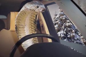 Krystyna Guzik jako Arktyczna Kobra reklamuje Eurosport