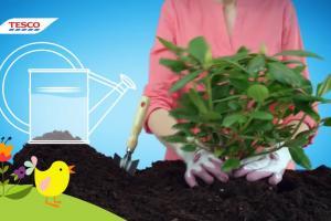 Pomocnik - nowy cykl reklam Tesco z praktycznymi poradami