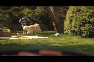 Rodzinny grill reklamuje sklepy Polomarket