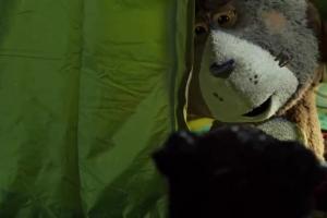 Plushak z psem pod namiotem reklamuje rabat na Vansy w Plush