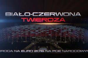 Zobacz, jak Polacy wywalczyli awans na Euro 2016