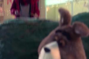 Plushak z rozmachem niesie choinkę w bożonarodzeniowym spocie Plusha