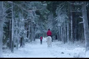 Zimowa jazda konna w reklamie sklepów Decathlon