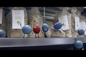 Punkty Payback w sklepach Kaufland - reklama