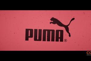 Miejska młodzież reklamuje buty Adidas, Puma, Reebok i Skechers w CCC