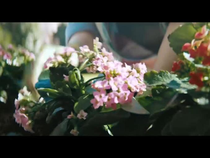 Zabawa z dziećmi w ogrodzie w reklamie Castoramy