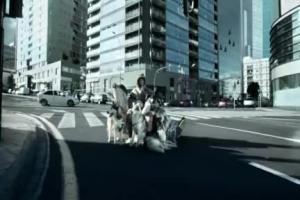 Eskimos w reklamie Link4
