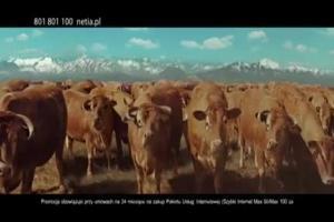Tomasz Kot jako kowboj reklamuje Foton w Netii